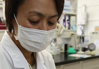 「柿渋で感染力あるコロナウイルス、1万分の1以下に」 奈良県立医大発表 - 毎日新聞
