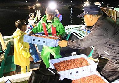 【深層リポート】駿河湾だけのサクラエビが大不漁 加工業者4割が廃業検討の衝撃(1/3ページ) - 産経ニュース