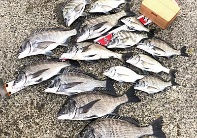 【紀州釣り】秋の海に変わっていく淡路島でチヌ釣りを楽しんできました! | 淡路島を愛する紀州釣り師〜茅渟富団子屋〜
