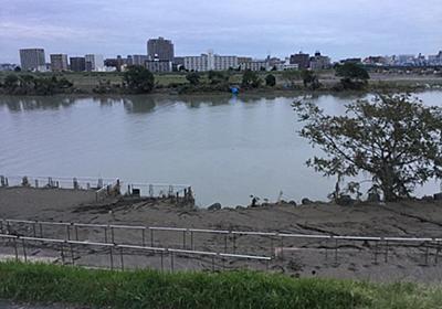 下がらぬ多摩川の水位<ー堆積した土砂で緑道が消滅!!ー>|川崎市|身近な問題|地方|政治|社会|横浜センチュリー