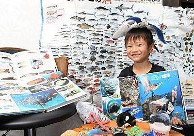 図鑑より詳しい魚博士は沖縄の6歳 人気図鑑の誤り指摘、出版社が修正へ - 琉球新報 - 沖縄の新聞、地域のニュース