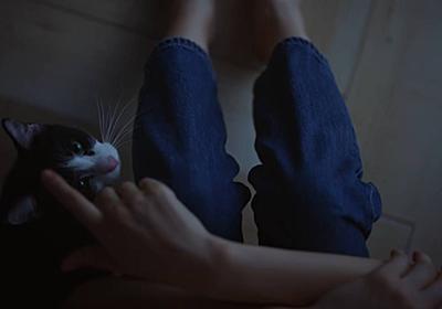 綾瀬はるかさんの完全復調祈願をする男 - コピの部屋