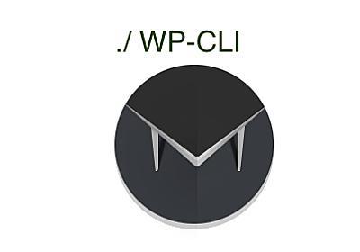 Using WP-CLI with Mina