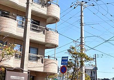 [パノラマ]函館市/国内最古のコンクリート電柱   電気新聞ウェブサイト