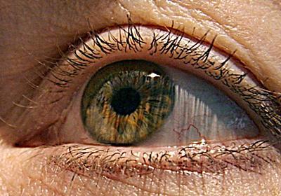 CNN.co.jp : 加齢による視力の衰え、赤い光を見ることで改善か