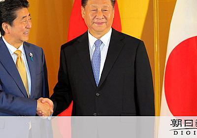 安倍外交「センスある」と評価 だが戦略には米も苦言:朝日新聞デジタル