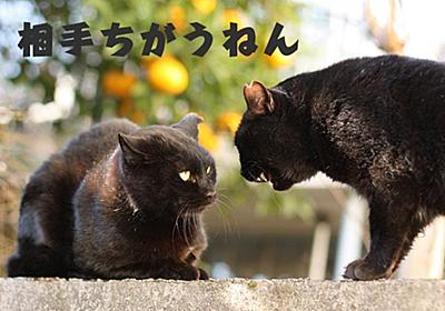 ここがヘンだよ名古屋人! – 上司に見る名古屋人気質(1)タイミング
