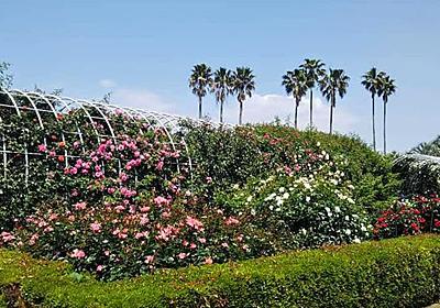 【動植物園】九十九島動植物園 森きらら|カメラとおでかけ