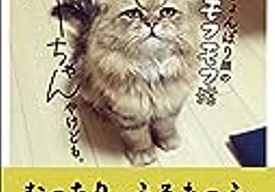 人気猫一覧/インスタやブログで話題のインフルエンサー猫ベスト10 - ていないブログ-主婦ミニマリストで整理収納アドバイザーなインテリア好き音楽オタクの雑記