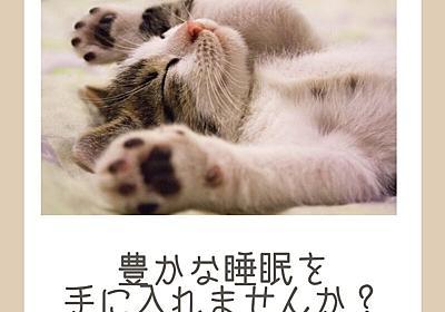 【睡眠改善】豊かな眠りについていますか?色々試したけど疲れが取れない。そんな睡眠の改善にスマートリングを使ってみよう! - ちょびちゃんねる