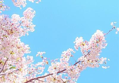 志村けんさんが亡くなったことがとても悲しい。ただの一視聴者でしかないけれど。 - michikoのメモ帳