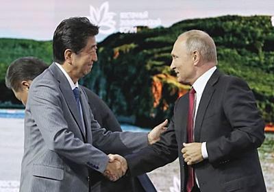 「安倍さん、ひどい外交的敗北」 プーチン提案「顔に食らった日本」 - 47NEWS