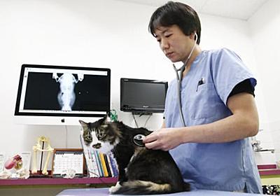 ペット訴訟急増、「獣医の過失」飼い主訴え(センサー)  :日本経済新聞