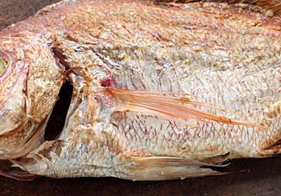 桜の季節に味わいたい!祝い事に欠かせない魚の王様『鯛』の魅力に迫る。|IKITOKI