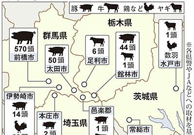 【動画】相次ぐ家畜ドロボウ 被害は700匹以上 牛、豚、鶏はどこに…(1/2ページ) - 産経ニュース