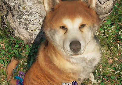 ゲームに出てくる犬のレビュー【その3】 - 三度の飯より犬が好き