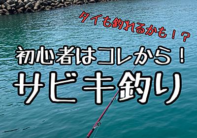 【初心者向け】サビキ釣り!親子でもカップルでも楽しめる! - ぼんくれの最高の人生ブログ