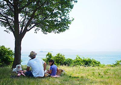 日曜のお昼、お弁当持って海へ|「colocal コロカル」ローカルを学ぶ・暮らす・旅する