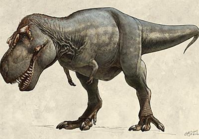 史上最大のティラノサウルスと判明、約9トン | ナショナルジオグラフィック日本版サイト