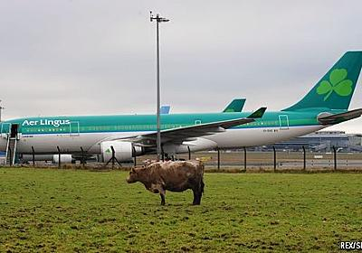 Emerald aisles - Brexit poses a threat to Ireland's aircraft-leasing business   Finance & economics   The Economist