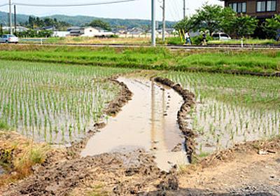 早く当選証書を…慌てた町長、田んぼに突っ込む 新潟:朝日新聞デジタル