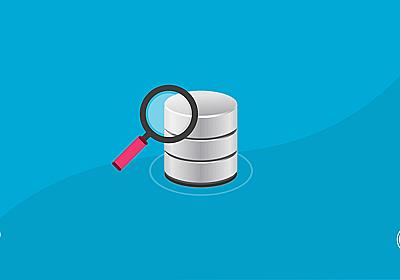 The Ultimate Developer's Guide to the WordPress Database
