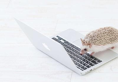 「Webデザイナーはコーディングできるべきか」という議論に対する私の考え | Stocker.jp / diary