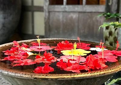 石垣島で食事をするなら絶対に行きたい!石垣で美味しいお店勝手に厳選おすすめ5店│す。マイル!のんびり楽しくANAのSFC修行