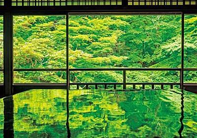 【京都観光】緑が織り成す幻想的世界!青モミジの絶景寺「瑠璃光院」で特別拝観 | NewsWalker