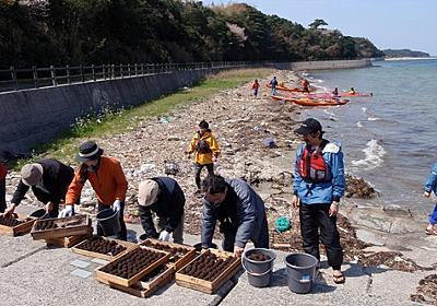 キーワードは「鉄」 ~鉄イオンが拓く海の持続可能性~|JFS ジャパン・フォー・サステナビリティ