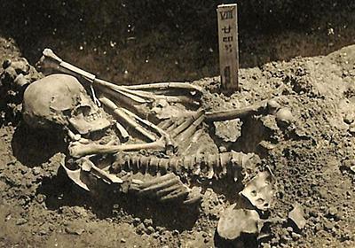 CNN.co.jp : 最古のサメ襲撃の犠牲者、日本で発見 3000年以上前