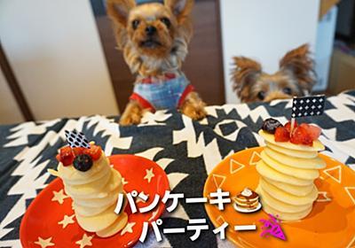 愛犬の手作りおやつ☆材料2つで簡単ワンコのパンケーキ - まめうに日記