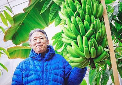 皮まで丸ごと食べられる「もんげーバナナ」を開発した岡山市の田中節三さん | かがり火WEB