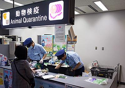 なぜ日本は豚コレラの流行を止められないのか  WEDGE Infinity(ウェッジ)