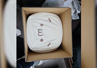 引っ越しのダンボールに詰められたショボーン(´・ω・`)クッション→サカイの人がしてくれた「分かってる」気遣いが素敵 - Togetter