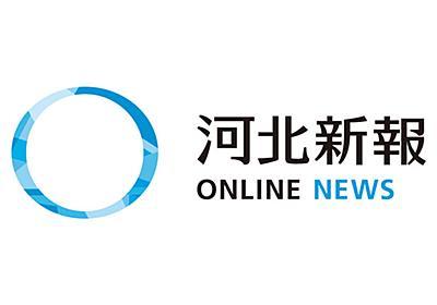 社説|イノシシ被害増加/国は中山間地に厚い支援を | 河北新報オンラインニュース