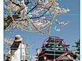 たのしい構図の見つけ方 - toshiboo's camera