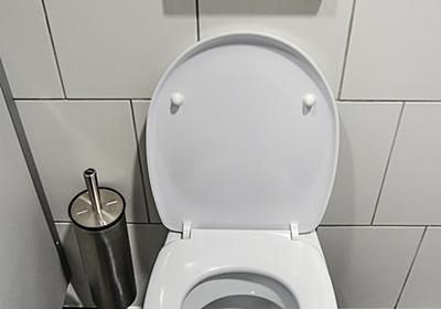 公共のトイレは次の人のことも考えて使用してほしいって愚痴 - AzuYahi日記