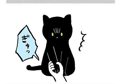 『お手はするけど握られるのは嫌…』と思った猫さんが試行錯誤しててえらい!「甲を差し出したら握られないって認識するのかな」 - Togetter