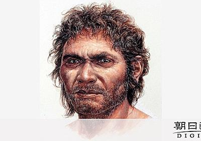 日本人の祖先は「港川人」? 旧石器時代、DNAで解析:朝日新聞デジタル