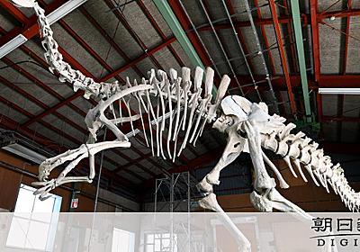 謎の恐竜、デイノケイルスの骨格復元 教授も驚き隠せず:朝日新聞デジタル