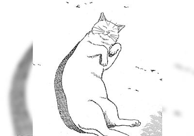 「最後そうじゃねえだろってシーンで全部持っていかれる」岡田索雲先生の不思議な猫漫画『猫欠』