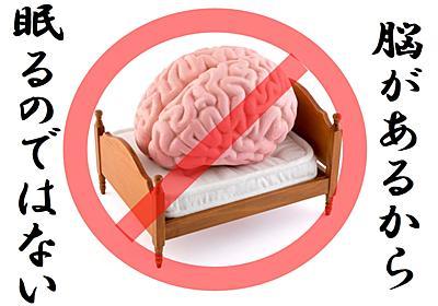"""""""脳が無い動物でも眠る""""と判明! 睡眠の起源はどこにあるのか? - ナゾロジー"""