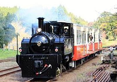 3月18日に定期運行再開 車両故障のトロッコ列車 小湊鉄道 | 千葉日報オンライン