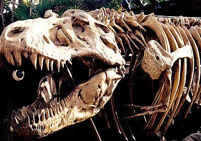 「地球上にはこれまで25億頭のティラノサウルスが生息していた」という推測 - GIGAZINE