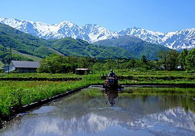 【画像】日本一美しい村が美しすぎてヤバい:哲学ニュースnwk