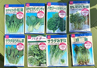 【100均検証】ダイソーの「花と野菜の種(2袋で100円)」を軽い気持ちで蒔きまくった結果… | ロケットニュース24