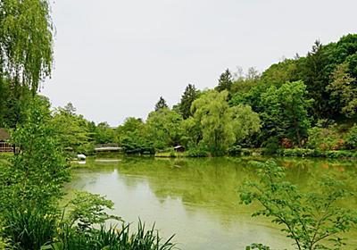外来種を悪とする「池の水ぜんぶ抜く」の疑問点 | 雑学 | 東洋経済オンライン | 経済ニュースの新基準