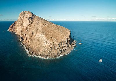 「死にゆく島」の自然が劇的に再生、思わぬ大成功   ナショナルジオグラフィック日本版サイト