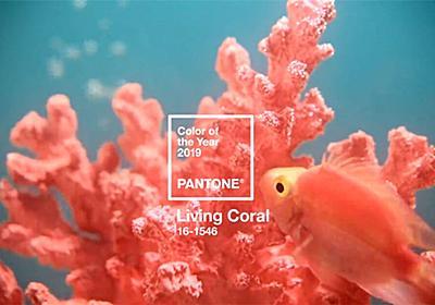 2019年の色が決定!美しいサンゴのような「リビング・コーラル Living Coral」パントンから発表 - PhotoshopVIP